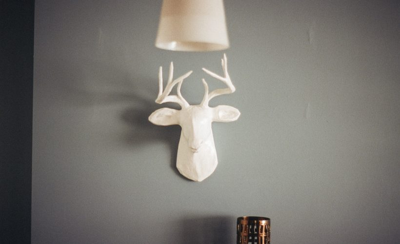 wall-home-deer